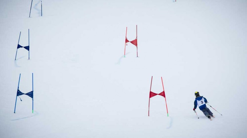 Torocuervo en Grandvalira Andorra. Foto de James Sturcke | www.sturcke.org
